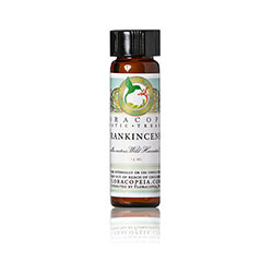 Frankincense Carterii